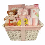 New Baby Girl Arrival Gift Basket
